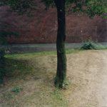 Laurenz Berges  Essen-Altenessen, 1998 C-Print, gerahmt 63 x 54 cm Ed. 6