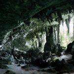 Niah Cave, Borneo, 2008, C-Print, 172 x 257 cm (framed), Ed. 4