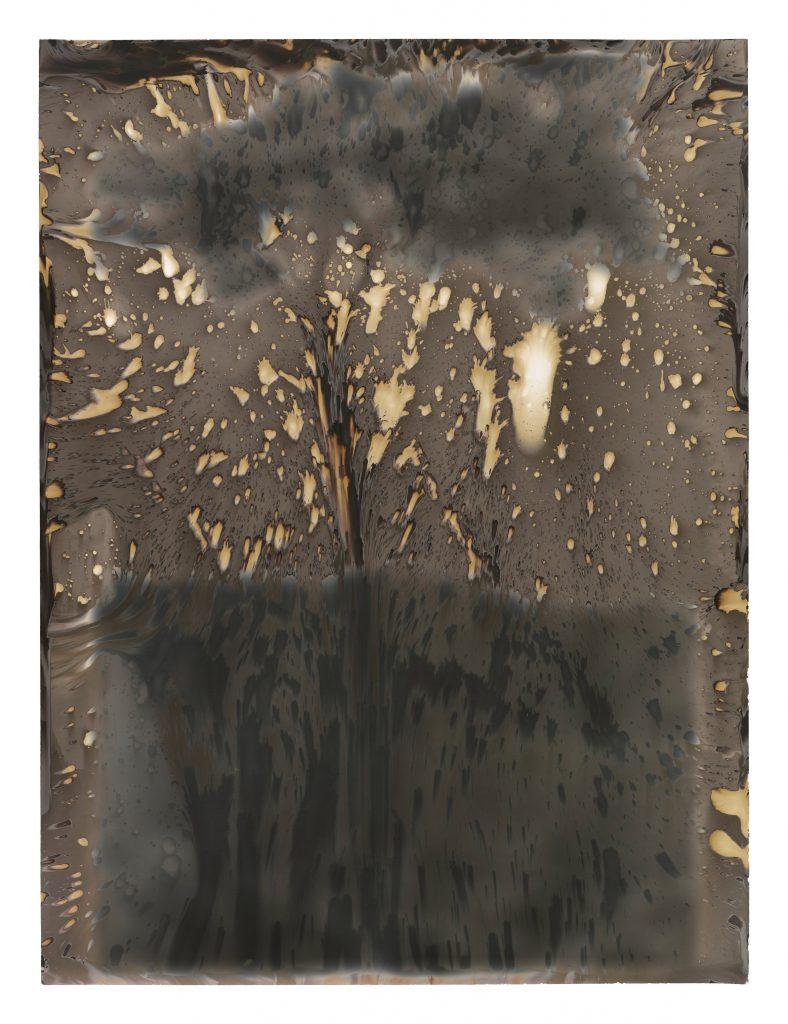 Untitled (W-Series), 2017, silver gelatine print, 40 x 30 cm, framed, Unique