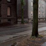 Butendorf, 2009, C-print, framed, 62 x 87 cm, Ed. 7
