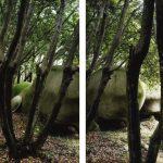 LOVAG IV, 2013, Diptych C-Print, museum glass each 107 x 85 cm, framed gerahmt, Ed. 5 + 1 AP